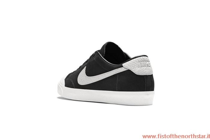 Nike Sb Zoom All Court Ck