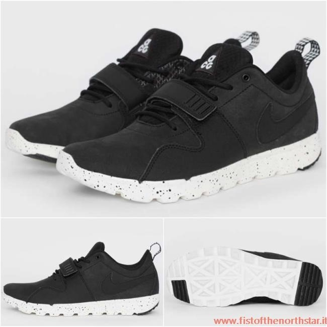 Nike Sb Trainerendor Low Acg